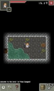 Pixel Dungeon Debut